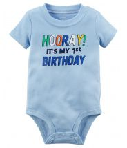 1st Birthday Collectible Bodysuit