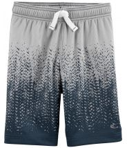 Dry Wick Active Mesh Shorts